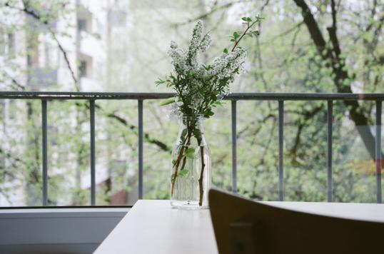 Eine Grüne Oase Im Zentrum Der Stadt Ist Schließlich Ideal Für Einen  Entspannten Ausgleich Zum Stressigen Alltag.